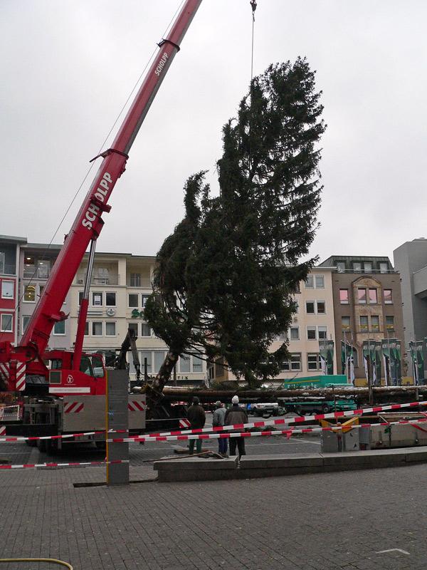 gablenberger klaus blog blog archive weihnachtsmarkt stuttgart ein weihnachtsbaum vor dem. Black Bedroom Furniture Sets. Home Design Ideas