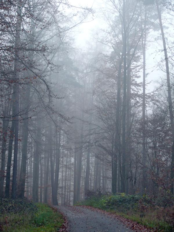 Wenn graue Nebel...............