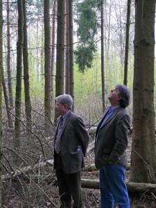 Die Vorsitzenden bei der Suche nach dem Maibaum