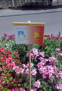 Blumenwettbewerb