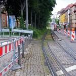 Ostendstraße Baumreihe