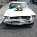 Mustang als Hochzeitskutsche