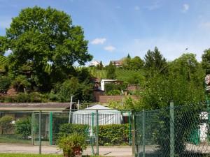 Anlage der Kleintierzüchter Gaisburg, im Hintergrund der Abelsberg