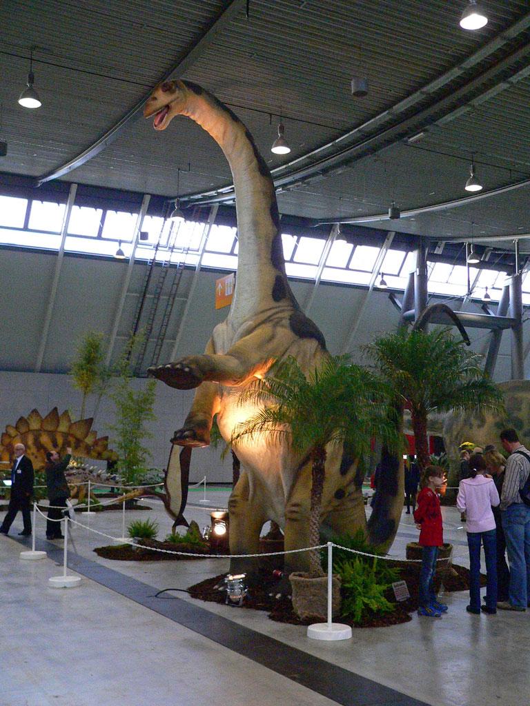 Dinosaurier Museum Bonn
