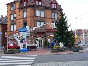 Nun hat auch Ostheim seinen Weihnachtsbaum