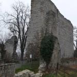 Burgruine Hofen