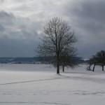 Winter am Flugplatz Malmsheim