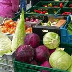 Kraut von unseren Wochenmärkten