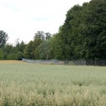 Flugplatzgelände Malmsheim