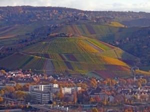 Mönchsberg und Württemberg