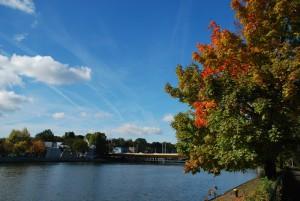 Neckar-am-Leuze