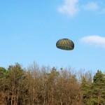 Landung im Wald