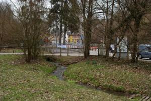 Nesenbach-taucht-auf