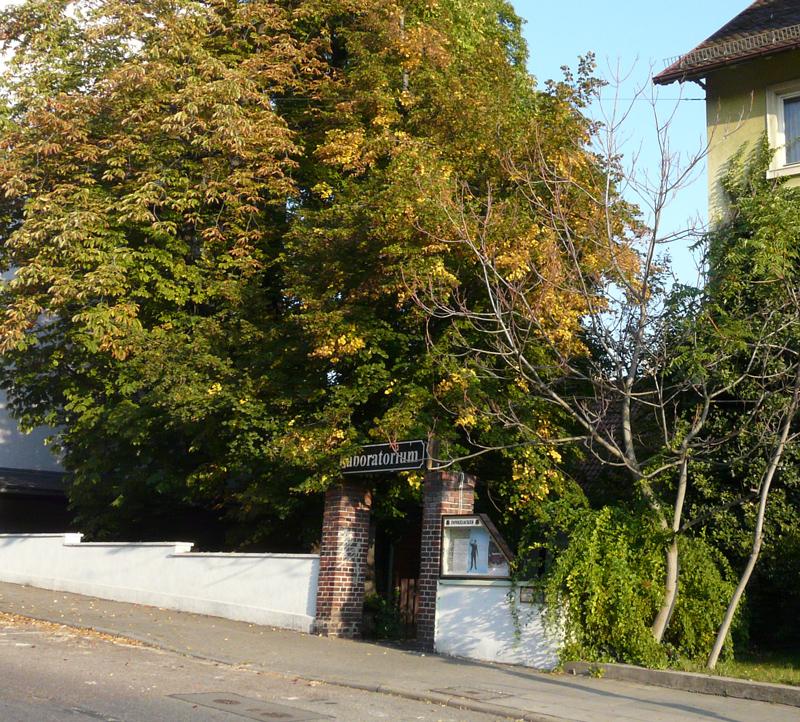 stadt fellbach rathaus