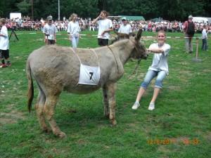 Ein störrischer Esel ;)