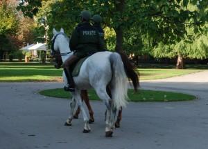 Polizei-Pferde