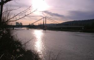 Am-Neckar-Dez2012-1