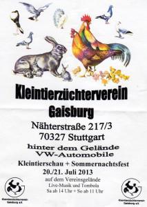 Gaisburg-Kleintierz0005