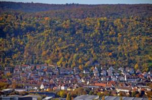 Wangener-Berg