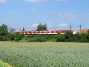 K-S-Bahn-Renningen-Schnalle