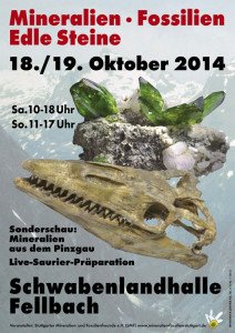 Fellbach-2014-1