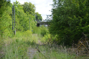 Hesse-Bahn10-K