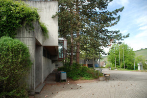 K-Steinenbergschule-12