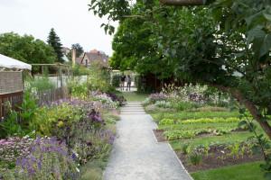 BH-Tag-der-offenen-Gartentü